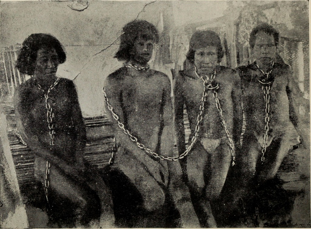The Putumayo, c. 1913, by Walter Hardenburg